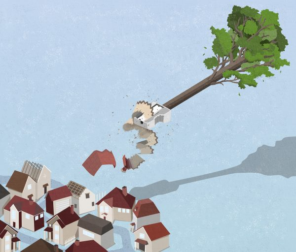 Illustration by Ashley Mozo