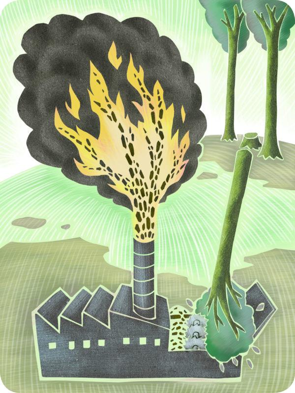 Illustration by Joe Guanjie Zhou
