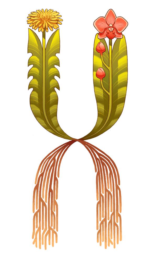 Illustration by Queenie Chan