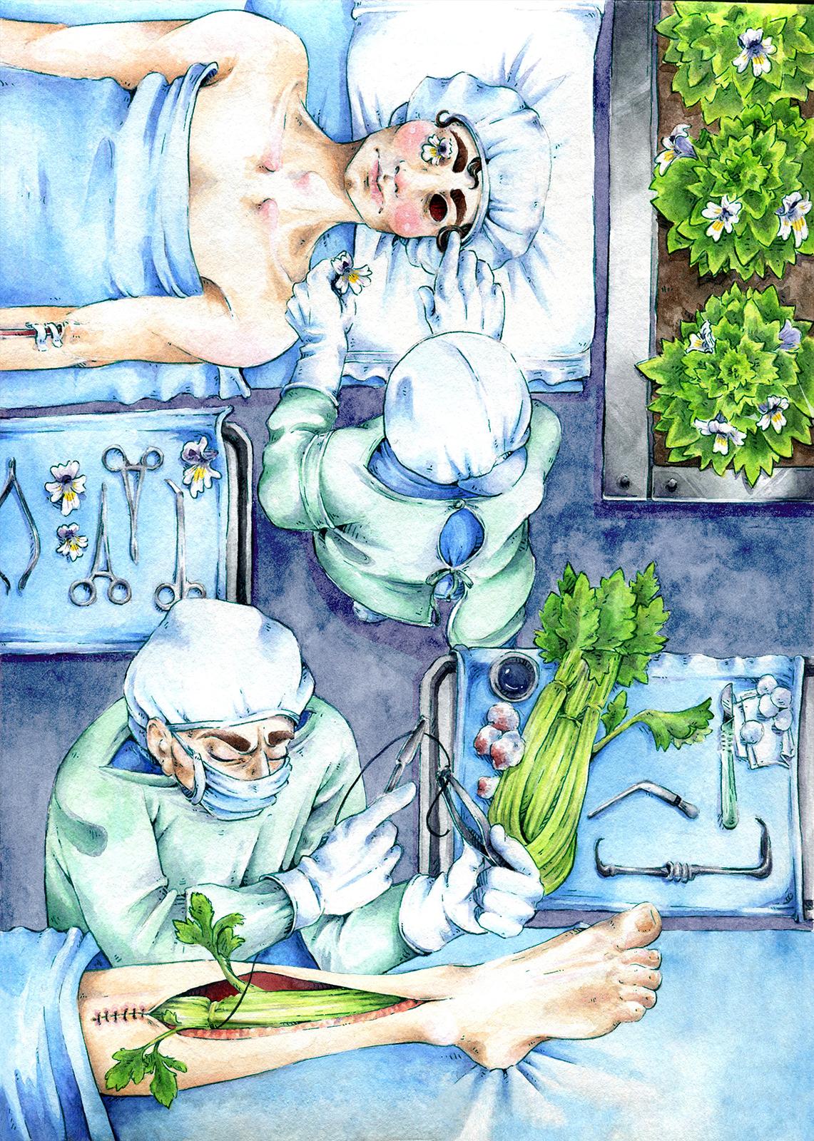 Illustration by Rebecca Schindler-Wood