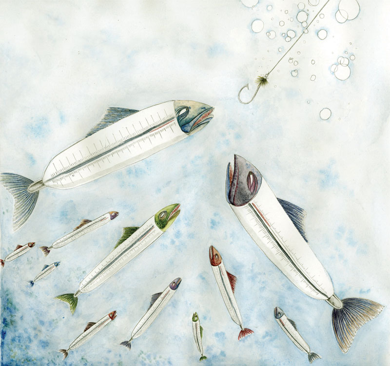 Illustration by Ali Hall