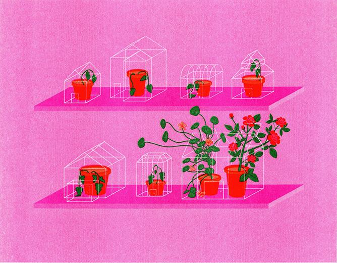 Illustration by Chloe Evert