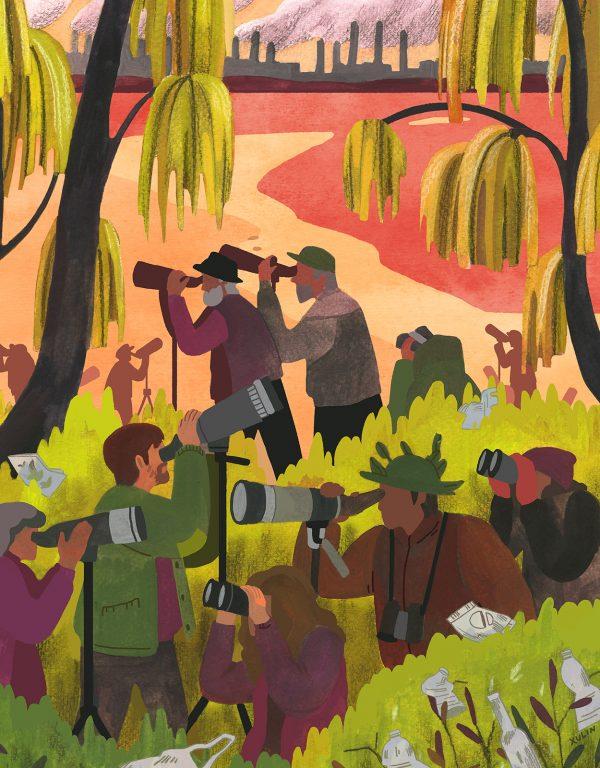Illustration by Xulin Wang